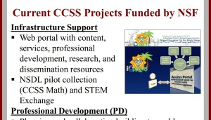 Current Nat'l Science Foundation work for CCSS includes professional development (for the teachers, leaders), infrastructure (computers, software), research (as in mind, education, etc.) and assessments (tests that measure)